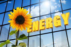 Bent U Op Zoek Naar De Beste Groene Energie?